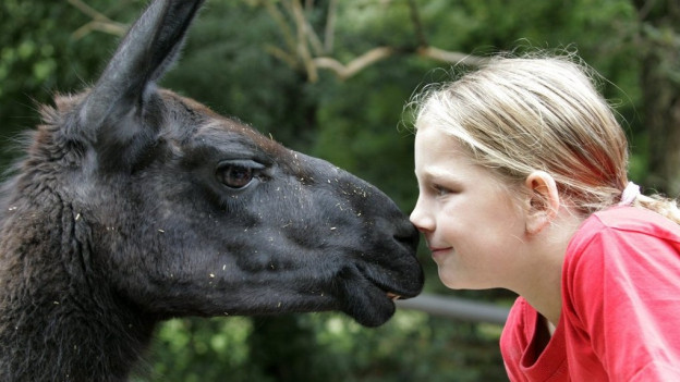 Für viele Kinder ist der Zolli-Besuch ein besonderes Erlebnis