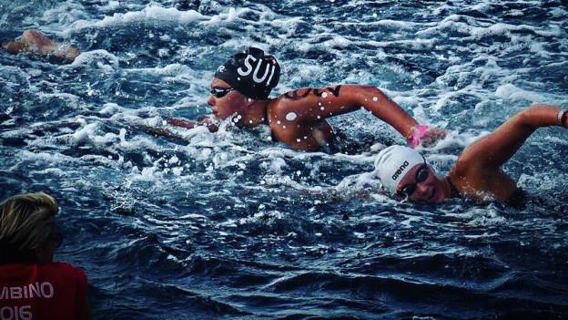 Open Water schwimmerin