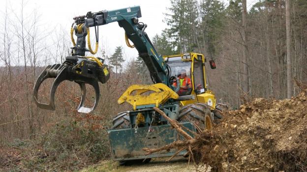 Radbagger mit Baum