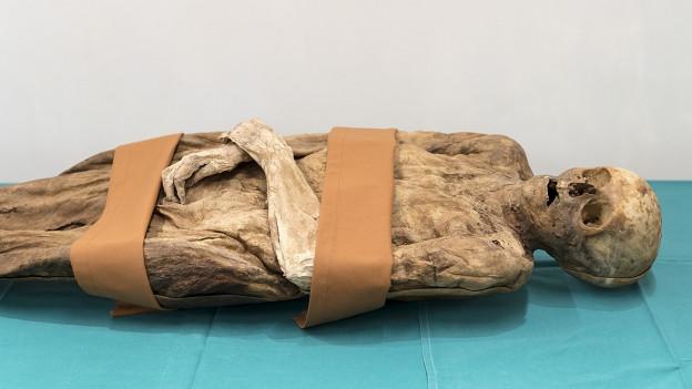 Bild der identifizierten Mumie