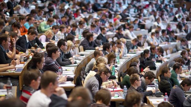 Zusammenlegung von Studiengängen ist Thema
