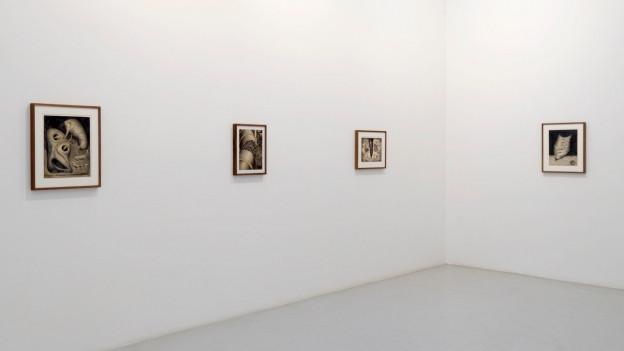 Bilder an Wand