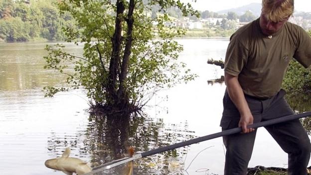 Bleibt es länger trocken, müssen Bäche ausgefischt werden.