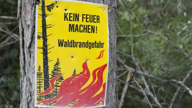 Die Waldbrandgefahrenstufe wurde in den beiden Basel auf die zweithöchste Stufe erhöht,