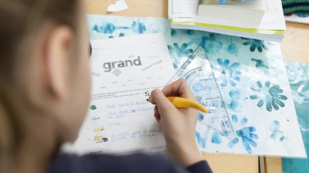 Die Drittklässler erhalten erst seit kurzer Zeit Französisch-Unterricht (Symbolbild)