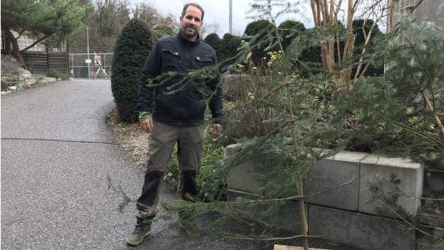 Jan Pistorius verkauft die kurmmen Bäume.