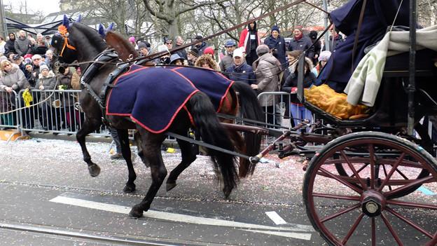 Pferde mit Chaise
