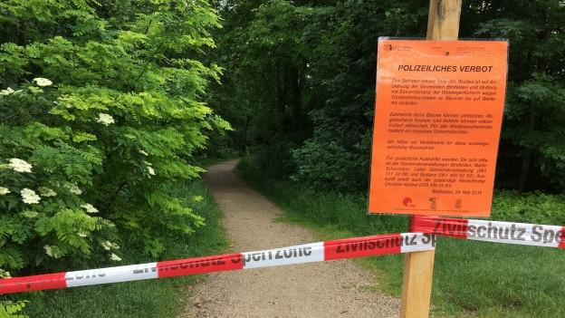 Der Hardwald ist seit letzter Woche teilweise gesperrrt