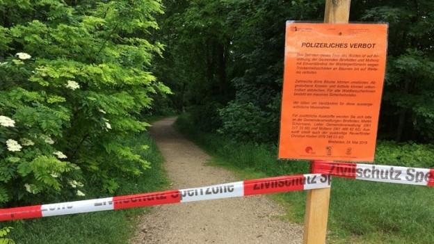 Der Hardwald bei Basel ist gesperrt