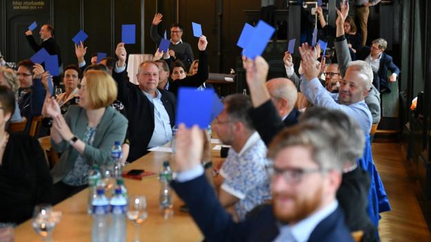 FDP-Parteimitglieder beim abstimmen