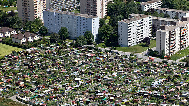 Die betroffenen Schrebergärten im Churer Rheinquartier müssen saniert werden.