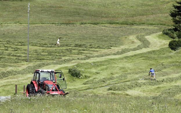Ein Traktor mäht eine Wiese bei Davos.