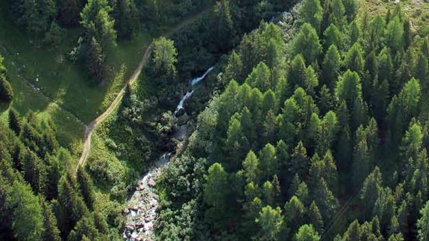 In Ausserferrera könnte ein neues Kleinwasser-Kraftwerk entstehen.
