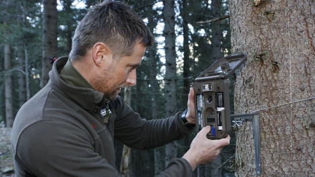 Ein Mann montiert eine Kamera an einem Baum.