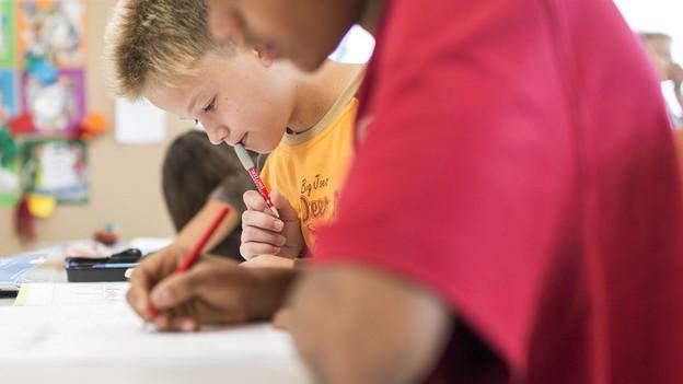 Ziel der Volksbegehren ist die Mitsprache in Bildungsfragen.