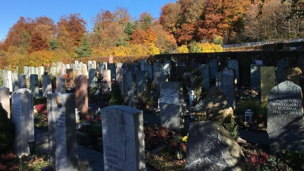 Seit 20 Jahren gibt es den Friedhof Fürstenwald in Chur.