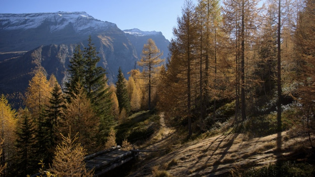 Kennen sie die UNESCO Biosfera Engiadina Val Müstair?