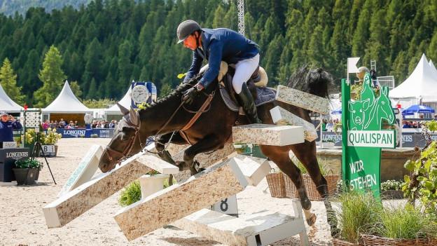 Springreiter und Pferd