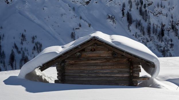 Stall im Schnee