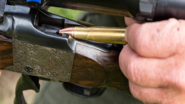 Bleihaltige Munition vor dem Aus?