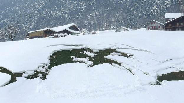 Bei Lawinen denkt man in erster Linie ans Hochgebirge. Aber auch in tieferen Lagen kann es Gleitschneerutsche geben.