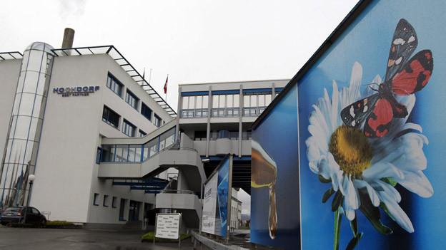 Die Hochdorf Gruppe schreibt beim Vermögen 40 Millionen Franken ab