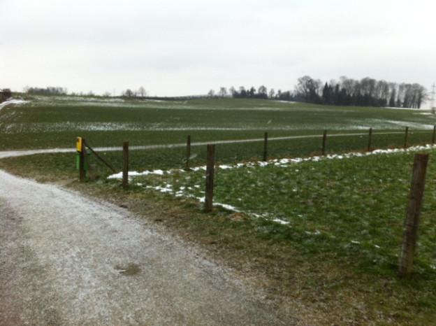 Auf diesem Areal in Cham soll die neue Kantonsschule gebaut werden.
