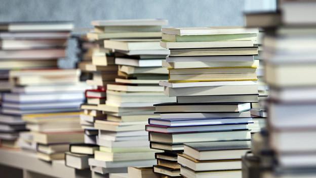 Über drei Millionen Bücher sollen in Büron gelagert werden.