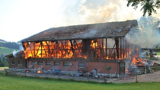 Verheerender Brand: Die Scheune in Hasle.