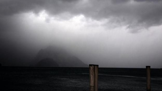 Die starken Gewitter und Sturmböen richteten in der Zentralschweiz Schäden an.