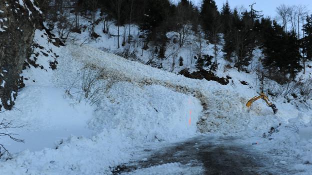 In dieser Lawine starb im Februar 2012 ein 33-jähriger Baggerführer am Stanserhorn.