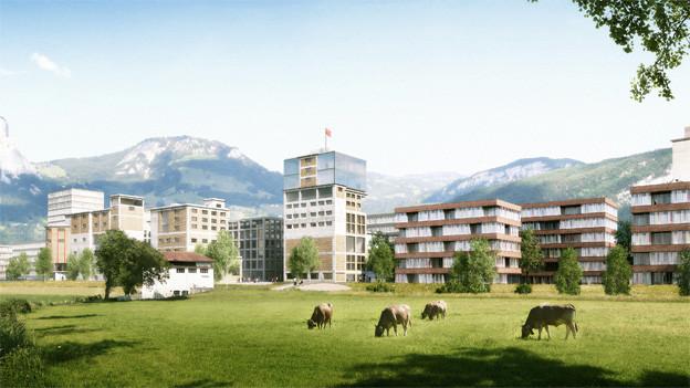 Im neuen Brunner Quartier sollen über 1500 Leute leben und arbeiten