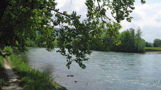 Der Lauf der Reuss soll renaturiert werden.