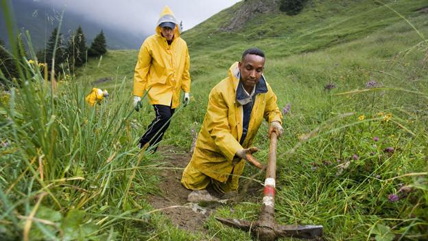 Flüchtlingen aus dem Kongo arbeiten auf einer Schwyzer Alp.