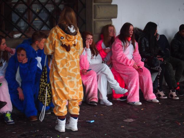 In Luzern sind derzeit viele Hasen unterwegs.