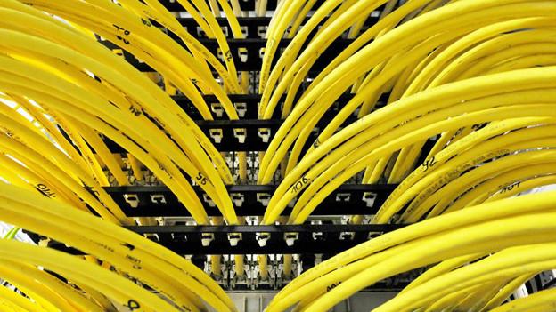 Eine Ansammlung von gelben Kabeln.