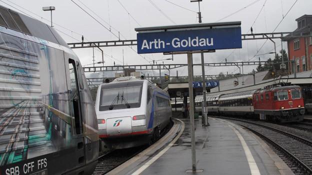 Blick auf den Bahnhof Arth-Goldau.