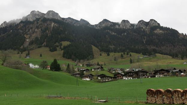 Ausgezeichneter Wald oberhalb von Flühli