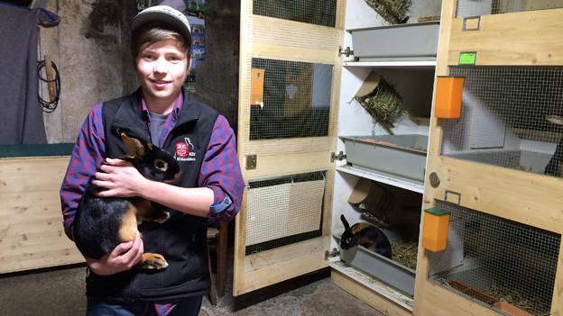 Kaninchen sind die Welt des 15-jährigen Hannes Odermatt.