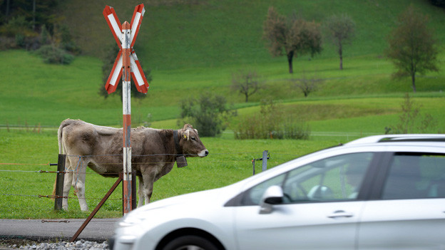 In Nidwalden müssen gefährliche Bahnübergänge saniert werden.