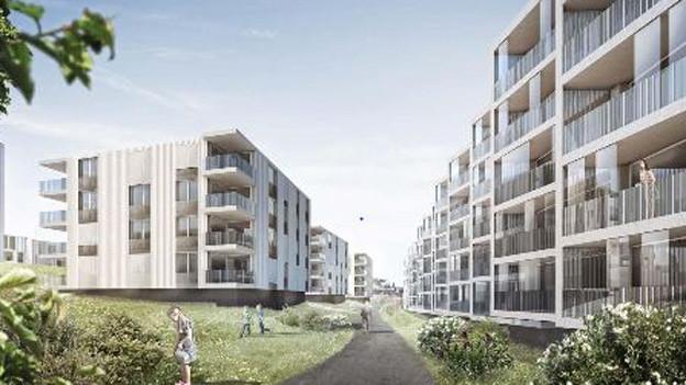 Auf der Herdschwand soll eine Wohnüberbauung entstehen.