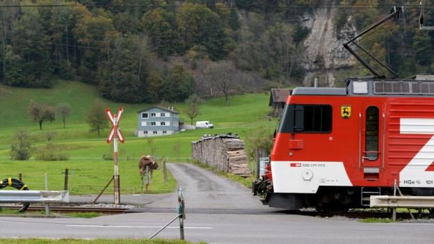 Ein Bahnübergang mit einem Zug.
