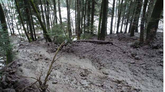 Ausgelöst wegen starkem Regen: Murgang in Lauerz.