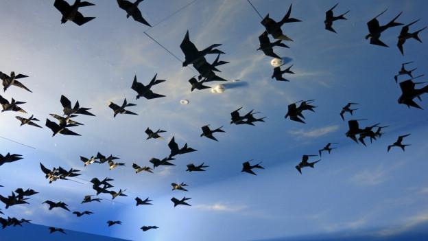 Das neue Besucherzentrum soll Begeisterung für die Vogelwelt wecken