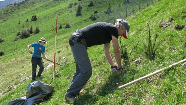 Die Freiwilligen sind im steilen Gelände im Einsatz.