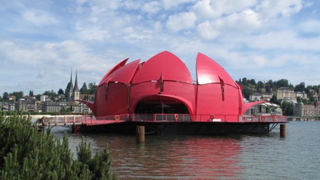 Die schwimmende Seerose in Luzern