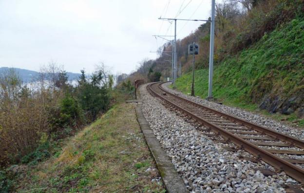 Bei Walchwil am Zugersee kommt die Doppelspur.