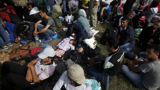 Flüchtlinge an der ungarischen Grenze.