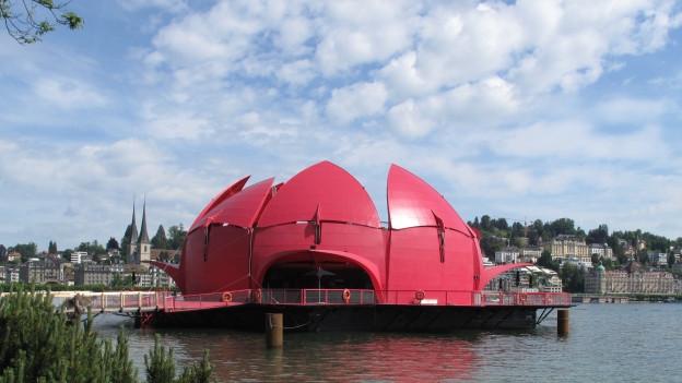 Die Seerose am Standort Luzern.
