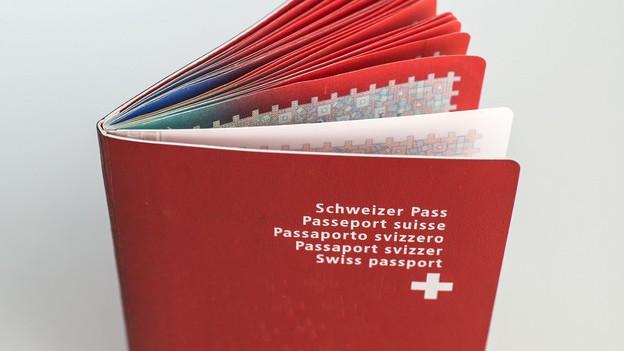 Schweizer Pass.